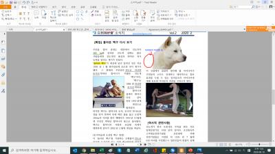 Foxit Reader